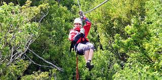 canopy_extremo_112013